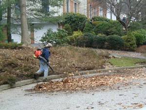 mulch_blower.removal